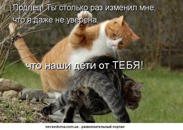 http://cs407128.vk.me/v407128266/6209/ZlJMIDFCYb4.jpg
