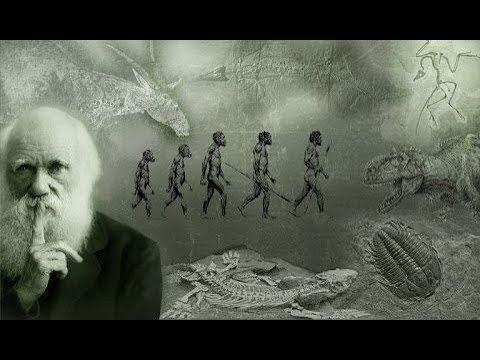 Был Ли Дарвин Прав Документальный National Geographic