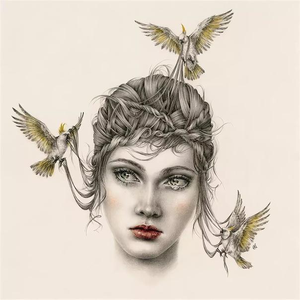 Австралийская художница Кортни Бримс по профессии  дизайнер интерьера, но вот уже более трех лет рисует сказочные рисунки карандашами