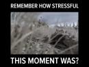 Помните как страшно это было в первый раз?