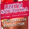 Цветы Сальвадора| Новосибирск