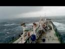 VID bumer sea