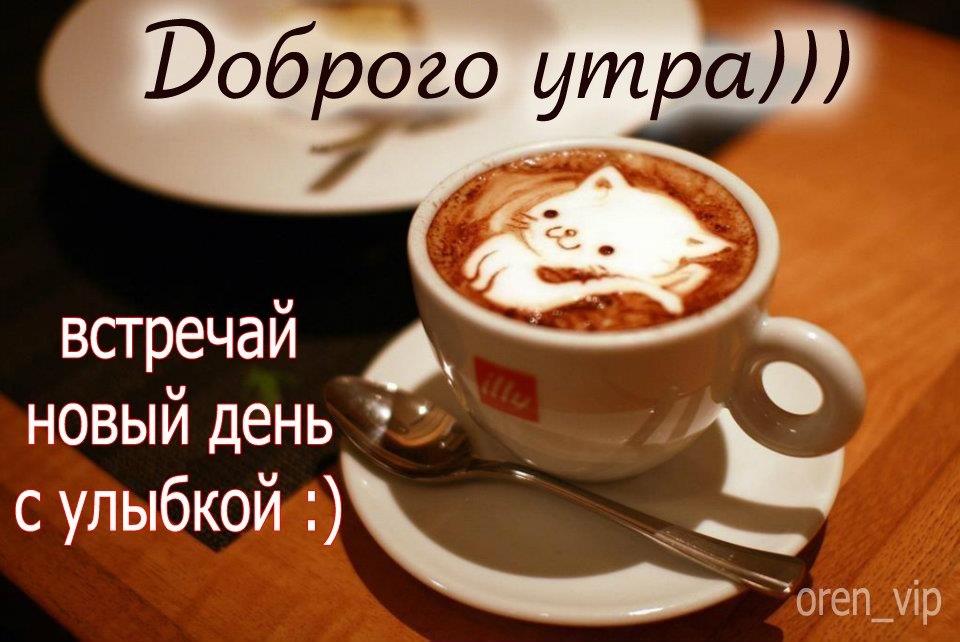 http://cs621425.vk.me/v621425617/3bfe/2pxSb03-4pY.jpg