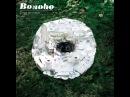 Bonobo: Ketto