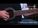 FENDER CD-60 и PARKWOOD W81E-BKS Обзор и сравнение черных гитар