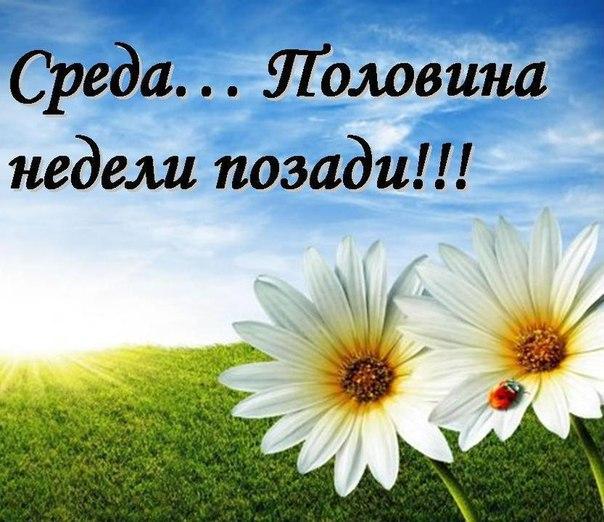 http://cs543101.vk.me/v543101299/baeb/rrRyKc2FhPc.jpg