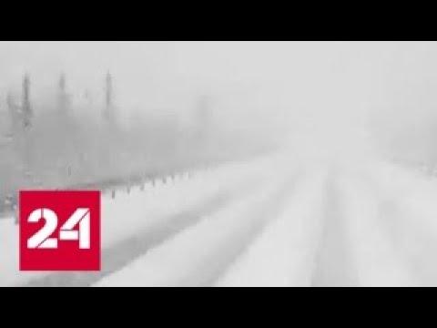 Погода 24: причуды капризного июня - Россия 24