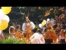 солнечный заяц в золотом бумажном шоу