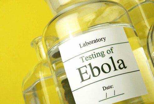 Какова смертность от Эболы