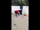 Наказание собакену за распотрошенную мусорку!