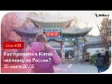 Как прожить в Китае человеку из России    Туту.ру Live #28