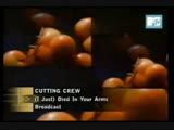 cutting crew - (i just) died in your arms tonight mtv asia