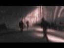 By Vine 1 Shadow Hooligansㄠ
