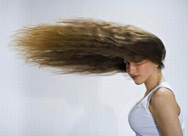 Сколько стоит пересадка волос site md