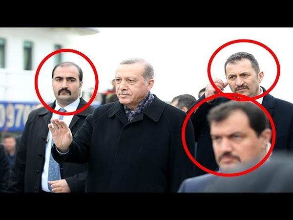 Erdoğanın Hilal Bıyıklı Bozkurtları