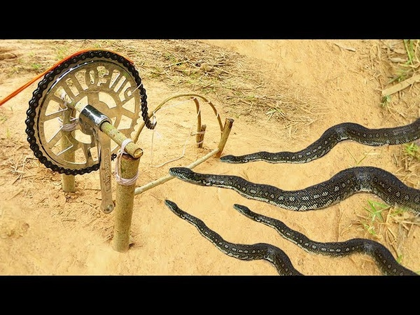 Simple DIY Snake Trap Using Bike Crank That Work 100% Made By Smart Boys