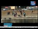 Видео убийства борца Юрия Власко. 18+ (7.08.2017)