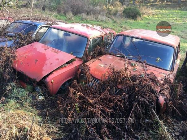 Кладбище старых советских Жигулей разных моделей обнаружили в Великобритании Фото выложил один из