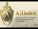 СОДРУЖЕСТВО АЛЬФА ФИЛЬМ 31 26 лого Альфа