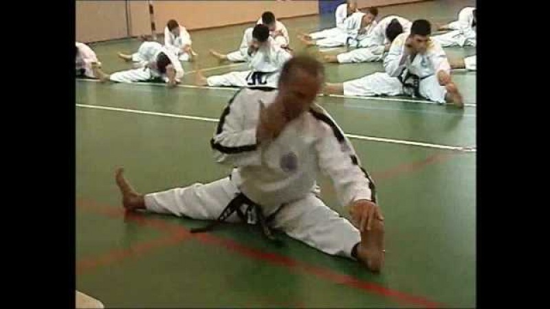Taekwon-do ITF Fundamental Kicking and Punching Techniques part 1