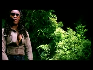 Tanya Stephens - Its a Pity