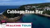 FREE Sydney Walking Tour Around Shelley Beach Walking Track Scuba Diving Snorkeling Paradise