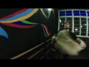 Miyagi, Эндшпиль Ft. Рем Дигга - I Got Love Zouk Dance Impro