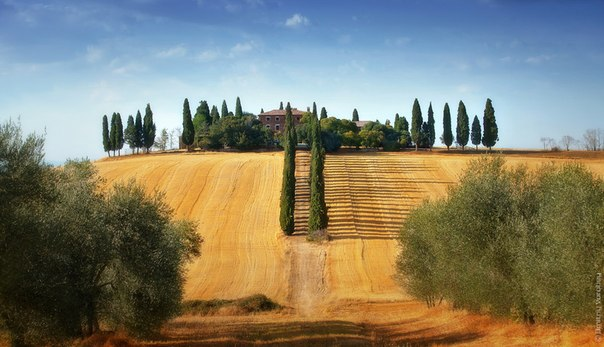 Тосканская вилла в районе Пьенцы, Италия. Автор фото: .