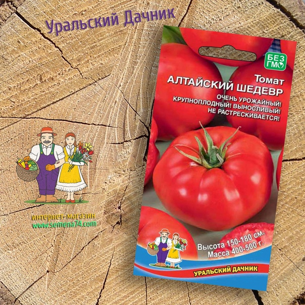 томат алтайский шедевр высокоурожайный, высокорослый сорт для закрытого и открытого грунта. плоды красные, плоскоокруглые, крупноребристые, массой 400-500 г, мясистые, сочные, вкусные, не склонные к растрескиванию. ценность: отличная урожайность,