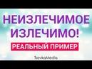 О СИЛЕ МЕДИТАЦИИ. История Сони с канала Джо Диспенза   TsovkaMedia