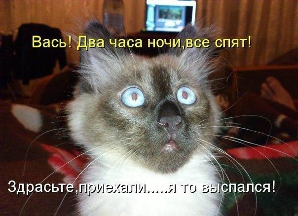 прикол ру:
