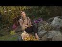 Фильм Ю.Ратомской Осень. Территория прекрасного
