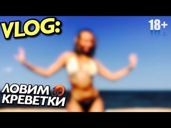 VLOG: УЧУ ВАС ЛОВИТЬ КРЕВЕТКИ / Андрей Мартыненко
