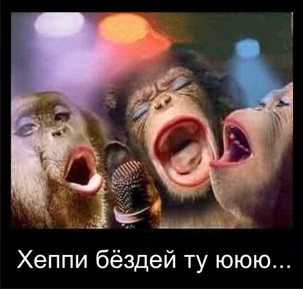 http://cs403820.userapi.com/v403820206/56e1/hi8ynlw3nRk.jpg