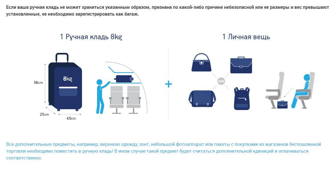 Инфографика: правила перевозки ручной клади
