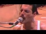 Freddie Mercury - We are the champions (ТОЛЬКО ГОЛОС)