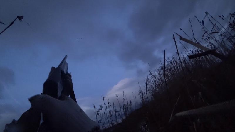 [Мир Охотника] Охота 160 на утку, перекличка с крякашом