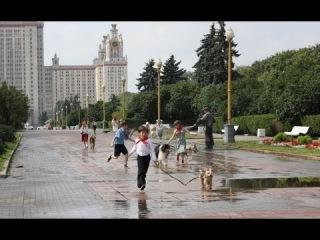 Собачий рай - Трейлер 2013 Семейный; Россия
