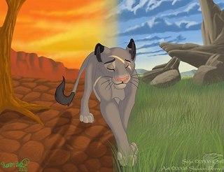 картинки львы аниме