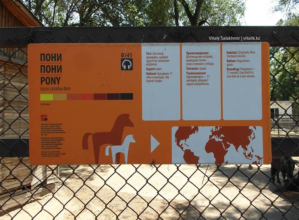Табличка на клетке пони, зоопарк Алматы 2018