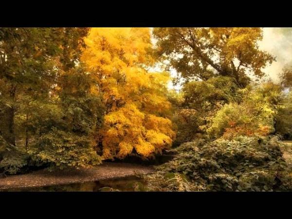 Sviatoslav Richter - Schumann - Bunte Blätter, Op 99