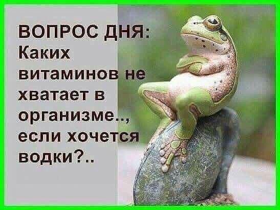 https://pp.vk.me/c543100/v543100723/3efaf/iXWaftWHQJc.jpg