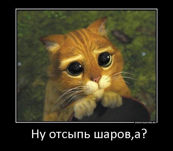 http://cs421516.vk.me/v421516294/228b/NiGePEfqEPQ.jpg