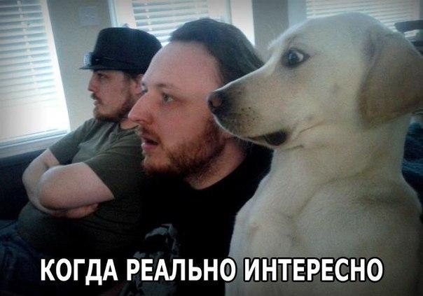 Всяко - разно 31 )))