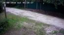 Видеокамера DS-I220 сняла как вор уезжает на велосипеде соседа