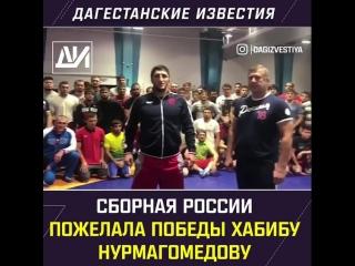 сборная по вольной борьбе поддержала Хабиба  MDK DAGESTAN
