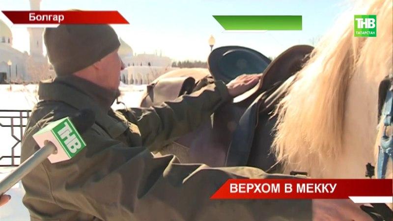 Паломники отправились из Болгара в священную Мекку на скакунах татарской породы - ТНВ