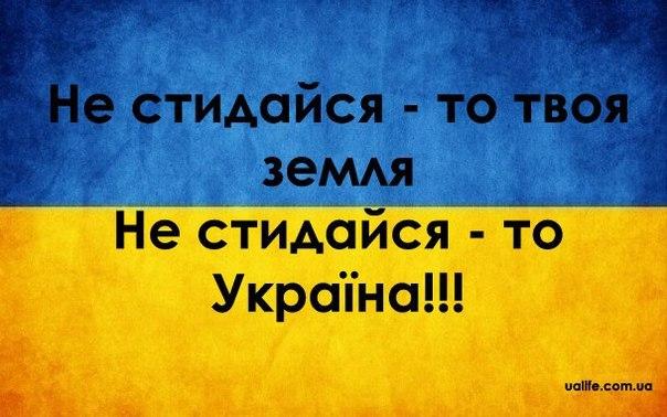 В мае новая полиция заработает в Северодонецке, Рубежном и Лисичанске, - Тука - Цензор.НЕТ 8366