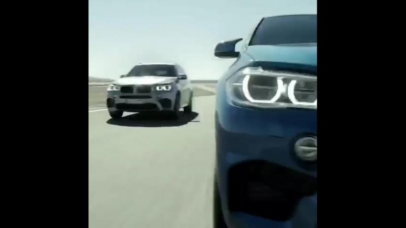 X5 X6