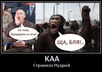 Коля Абрамович, 16 августа , Санкт-Петербург, id185194889